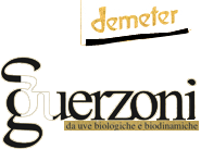 logo_guerzoni1